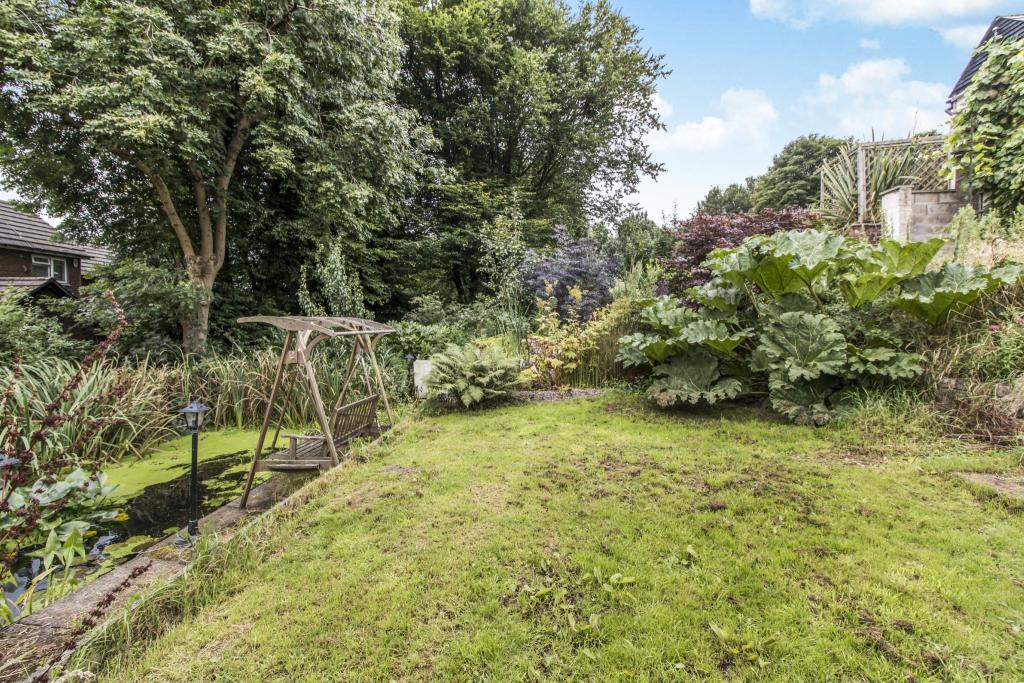 Garden with pond