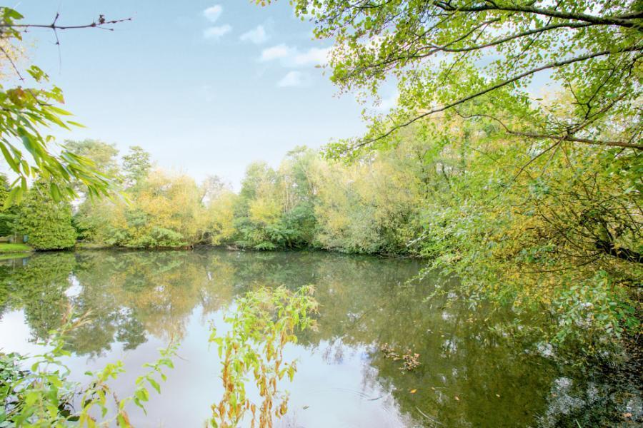 Pond 18