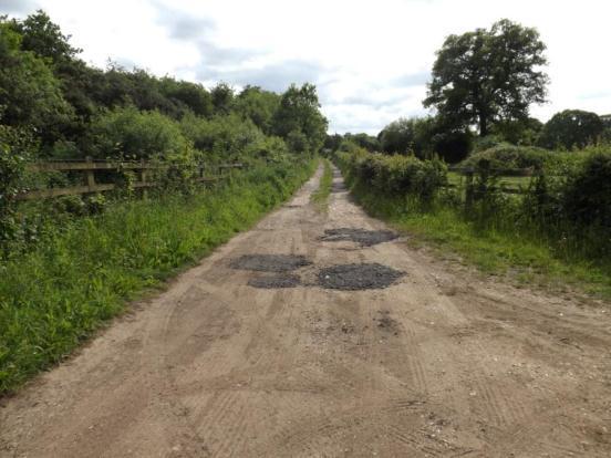 Lane To Paddock