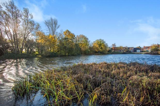 Stanhoe Duck Pond