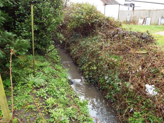 Little stream runs a