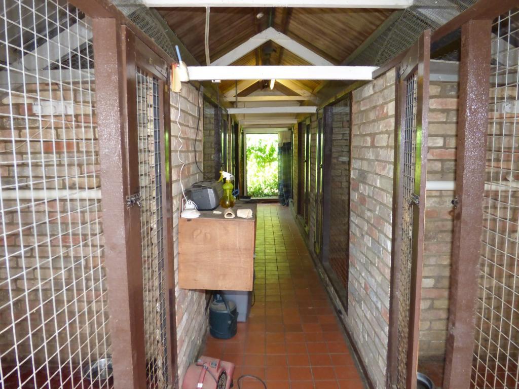 Kennel block interio