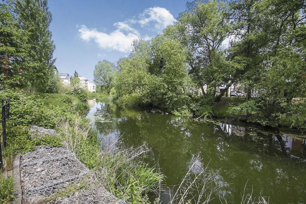 River Colne