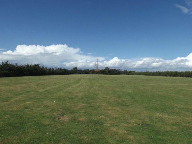 Lawned Field