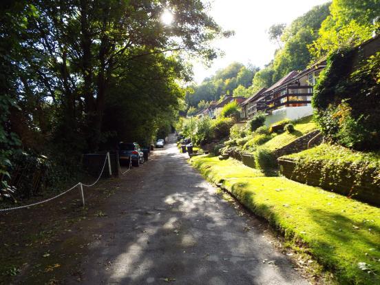 Milner Road and park