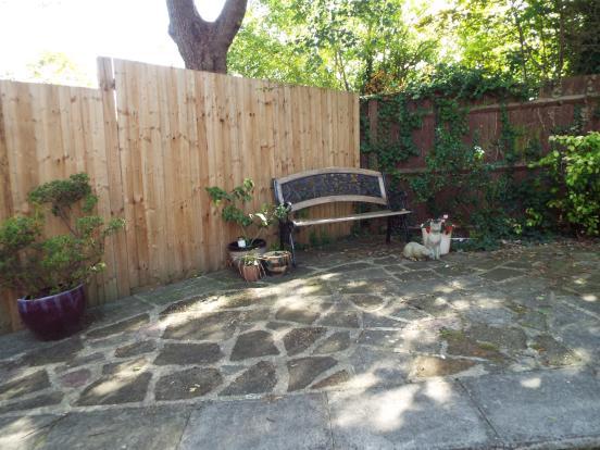 Front area of garden