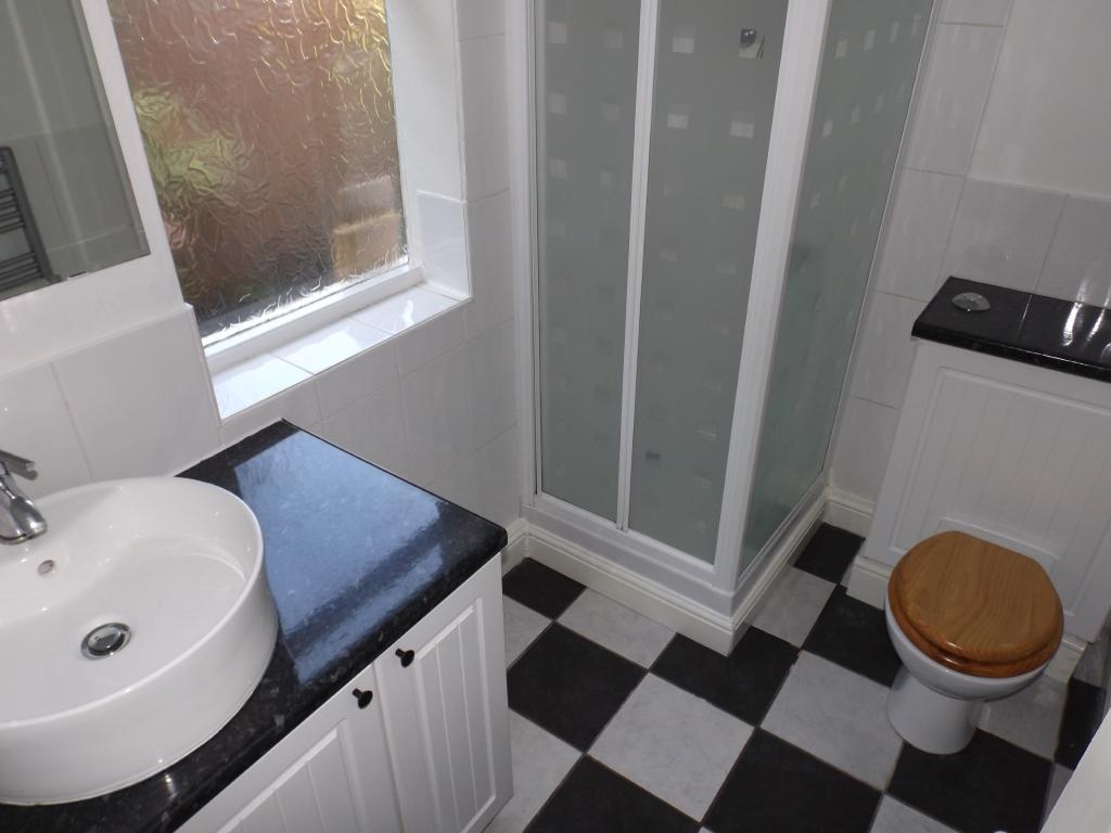 Donwstairs Shower Ro