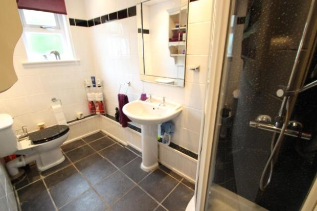 Downstair Shower Rm