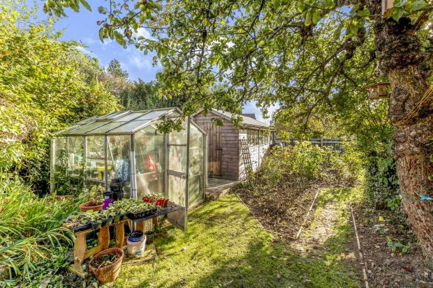 Rear Garden with Veg