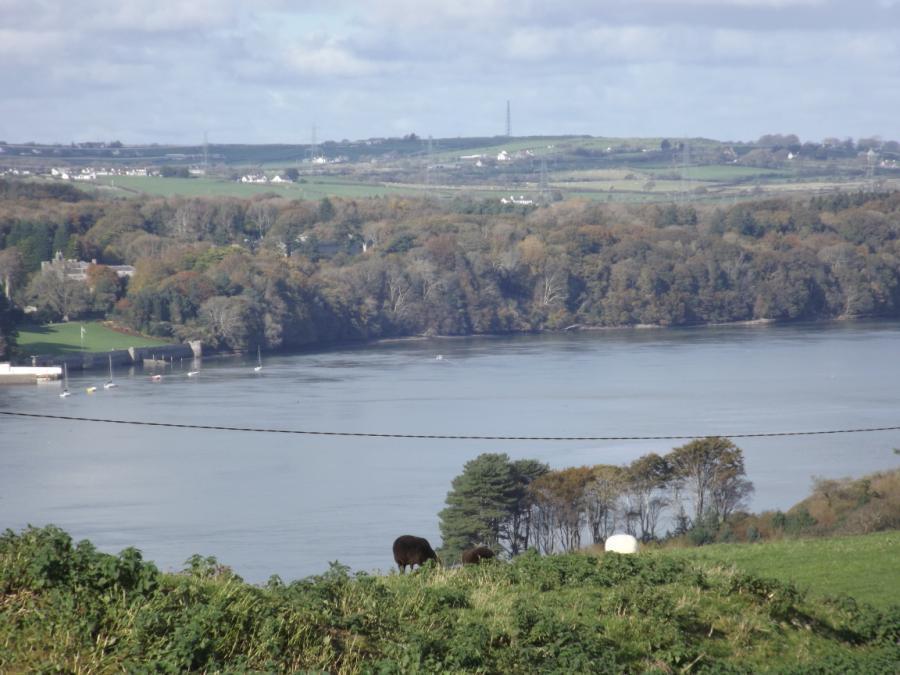 Plas Newydd & Strait