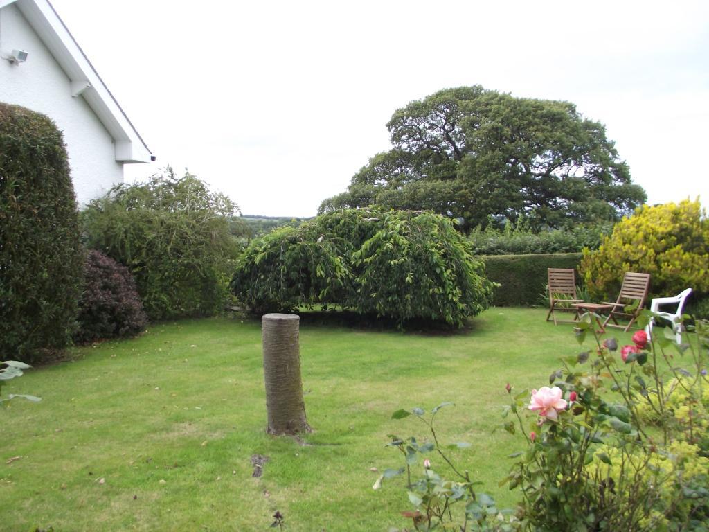 Side Garden Lawn