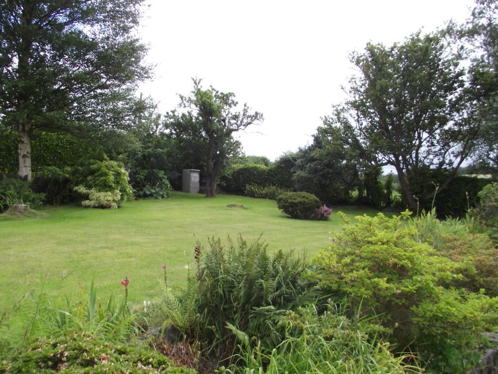 Front Garden Lawn