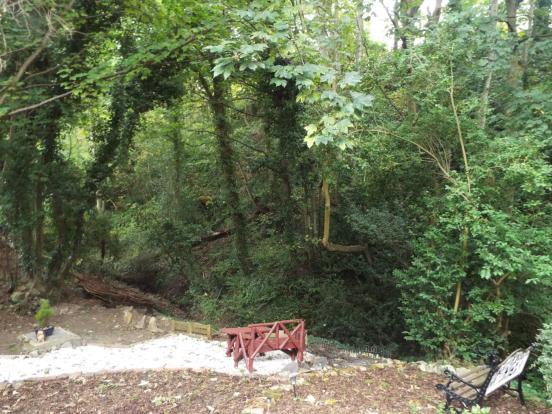 Rear Woodland