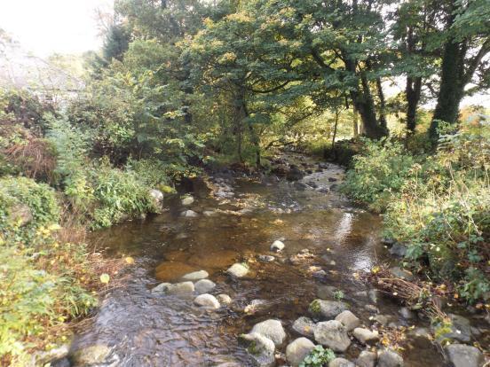 River in Rowen
