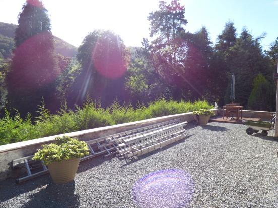 Gravelled Terrace &