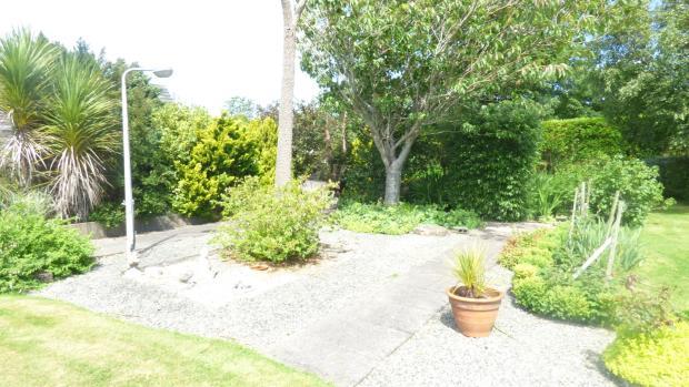 shrubs and patio