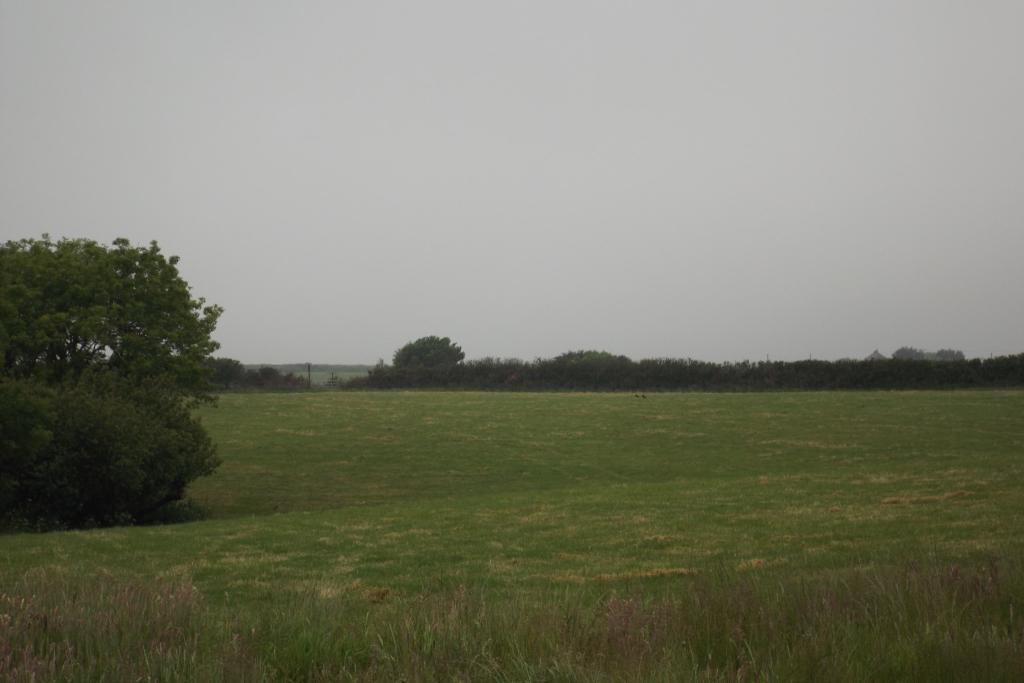 Further 6 acres avai