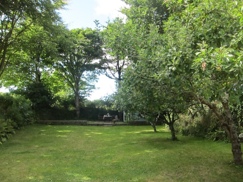 Tree lined garden