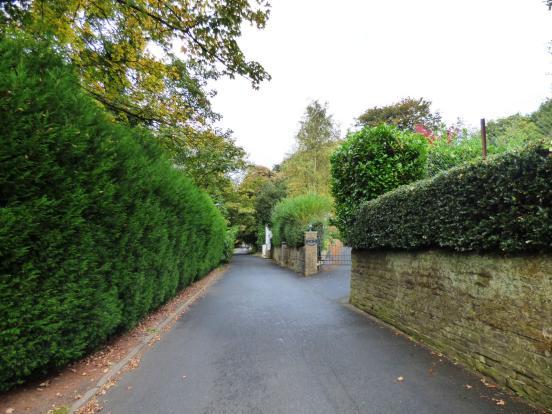 Light Alders Lane