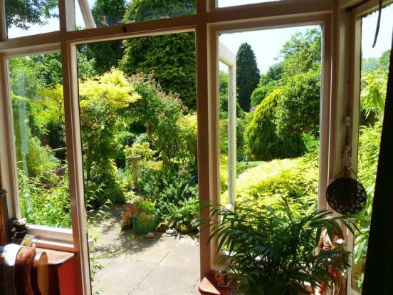 Back Window
