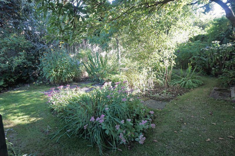 Rear Garden5