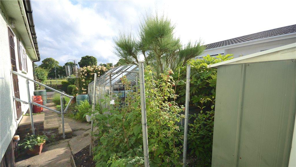 Side Garden 4