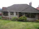 Detached Bungalow in Gellifawr Road...