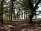 Land in Nr Worthenbury...
