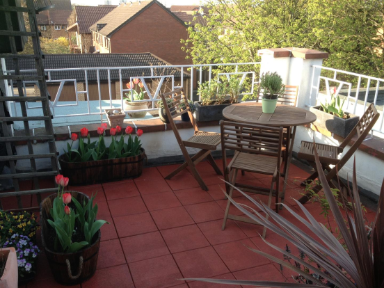 Roof terrace.png