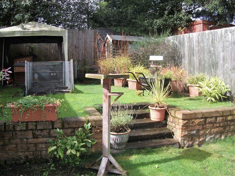 Sunny garden w...