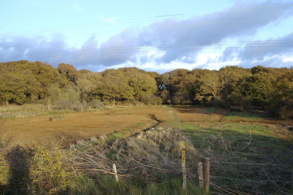 Land For Sale Hayling Island Uk