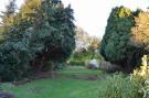 Long Rear Garden