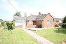 Elmhurst Road Detached Bungalow to rent