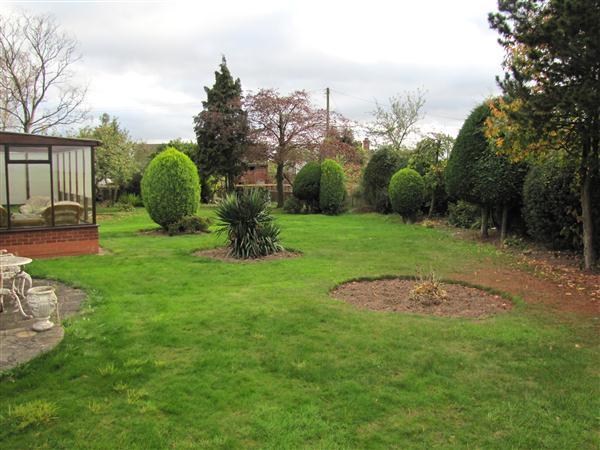 Side Garden Photo