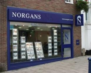 Norgans Estate Agents, Hitchinbranch details