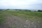 Paddock view 3