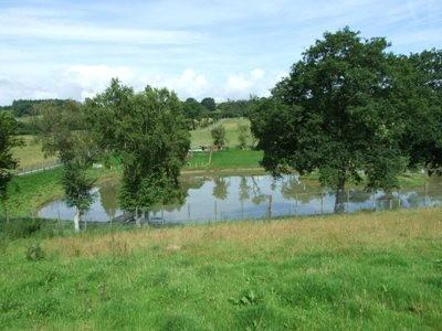 Property For Sale Around Builth Wells Mid Wales