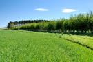 Farm Land in Berwick-Upon-Tweed for sale