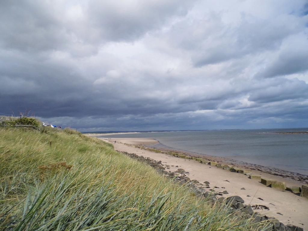 Cresswell beach whic