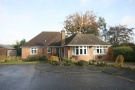 Detached Bungalow to rent in Swannells Wood, Studham...