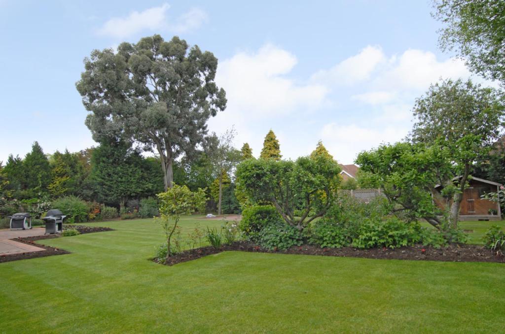 Garden New