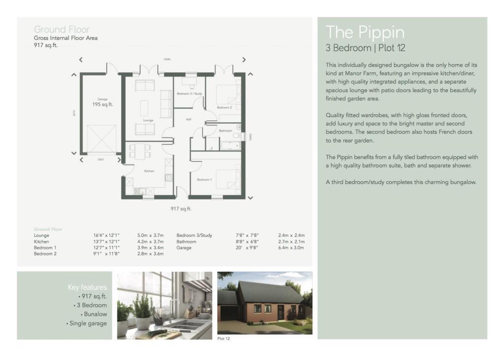 The Pippin Plot 12 i