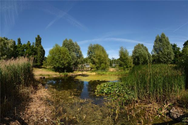 Mile End Park View2