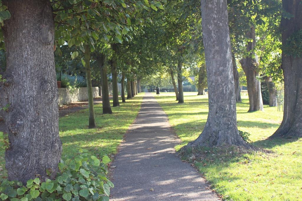 Tarring Park