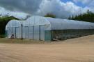 Polythene Greenhouse