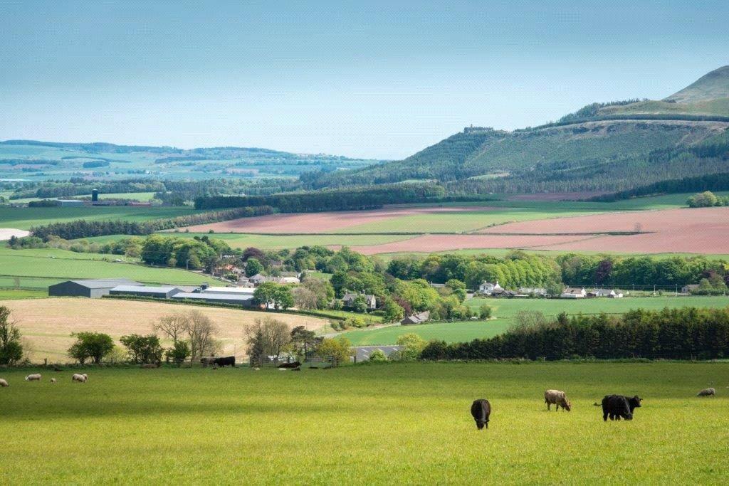 Pitlochie Farm