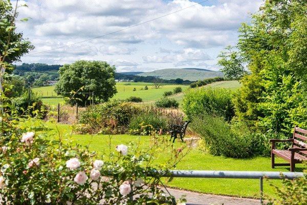 Gardens & View