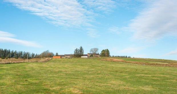 Mountainblaw Farm