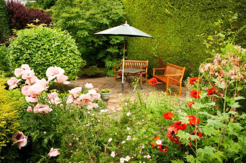 Garden/Patio