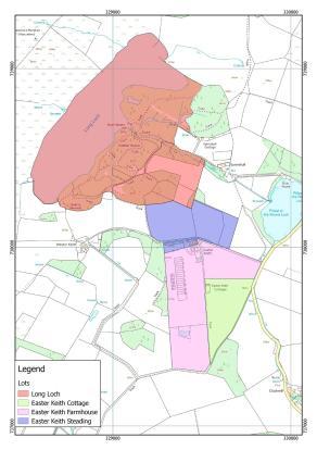 Lotting Map